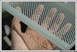 손잡이지주/외벽/수영풀 담을%s 매우 명확한 강화 유리 단단하게 한 유리