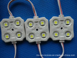 High Brightness Ce e RoHS 5050 4LEDs Display LED Module