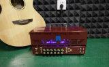 Tête 25With10W d'amplificateur de guitare de tube de redresseur avec les tubes de Jj (GU-22)