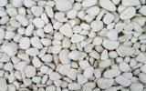 白い玉石の石、小石、小石の石