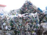 Película plástica que recicla la línea del fregado de las botellas de Machine/Pet