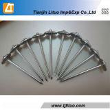 Spijkers van uitstekende kwaliteit van het Dakwerk van de Paraplu de Hoofd met Wasmachines