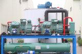 Машина льда хлопь R404A Refrigerant благоприятная для экологии для процесса еды (8 тонн в день)