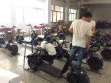 중국에서 성인을%s Woqu/Seev Citycoco 전기 스쿠터