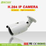 Камера IP CCTV обеспеченностью сети 1080P напольная Vandalproof (BF20L-IP20H)