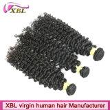 ベテランの人間の毛髪の工場ブラジルのカーリーヘアー