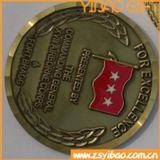 Fördernde kundenspezifische Herausforderungs-Münze in der Vergoldung (YB-Co-03)