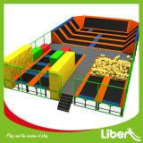 Park van de Trampoline van de leverancier het Binnen met het Zachte Beklimmen van de Muur