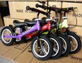 Hochwertige Kind-Kind-gehendes Fahrrad für Verkauf