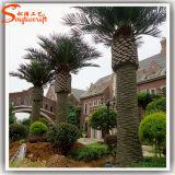 옥외 훈장 섬유 유리 인공적인 대추 야자 나무