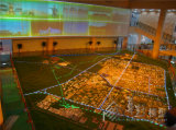 지역 계획 모형 또는 건물 모형 또는 부동산 모형 또는 모든 친절한 Fo 표시