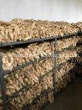Al por mayor de jengibre orgánico seco