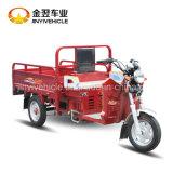 Cargamento máximo 350kg de la motocicleta de 3 ruedas