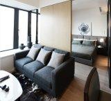 Мебель дома просто конструкции Kaviar для квартиры (HF-07)