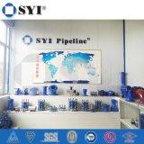 Garnitures de pipe malléables de fer de la Chine de groupe de Syi
