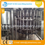 3 em 1 Pet Bottle Automatic Fruit Juice Filling Machine
