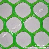 خضراء بلاستيكيّة شاشة شبكة لأنّ عشب حماية ([إكسم-034])