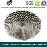China Safecore Honeycomb para Building Material