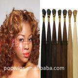 Qualità che dei capelli umani di Hotselling buona mi capovolgo personalizzo l'estensione dei capelli di colore