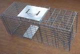 Cueillette humaniste Cages de tracteurs d'animaux vivants pour attraper des rats / Mink / Rongeur
