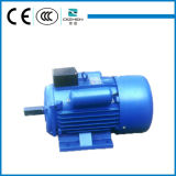 Motore elettrico del motore di monofase di serie di YL