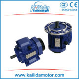 IECのGOST (ANP)の標準電動機