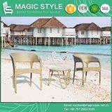 Silla de mimbre de la silla de la rota del conjunto de café de la fianza que cena la silla amontonable de la silla con el vector lateral (estilo mágico)