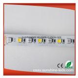 Striscia di colori LED di combinazione 5 di SMD5050 DC24V RGB+Ww3000k+Pw6000k