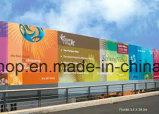 PVC Frontlit Canvas Printing Banner Flex (200dx300d 18X12 280g)