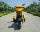 大人ガスはEPAによって承認される大人50cc Trikeのスクーターを立てる