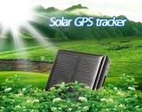 가장 새로운 방수 IP66 소형 태양 양 암소 동물성 GPS 추적자 RF-V26 의 자유로운 인조 인간 Ios APP 궤도를 가진 GPS 측정기