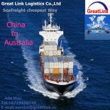 Serviço do frete de oceano (FCL/LCL) de China Shenzhen, Shanghai, Guangzhou, Ningbo a Austrália Sydney, Melbourne, Brisbane