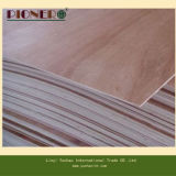 Bon Quality Commercial Plywood pour Furniture Grade