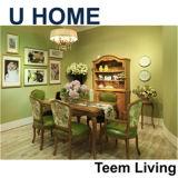 Mobilia speciale domestica del salone di disegno del sofà di U