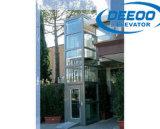 250 ~ 400 kg verde de ahorro de energía Villa Casa Ascensor