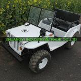 Golf eléctrico ATV de los pasajeros de la buena calidad 2