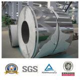 Bobine d'acier inoxydable de constructeur (304/310S/316/316L/321/904L) pour la construction