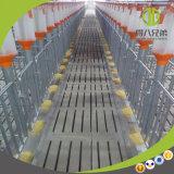 耐久の養豚場装置の鎖ディスク挿入システム必要性のエージェント