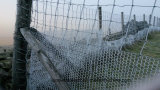 Загородка сетки мелкоячеистой сетки Sailin