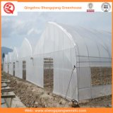 Película de polietileno Grow Tent for Vegetable / Flower / Fruit