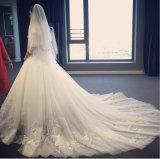 2017 우아한 공주 Bateau Bow Waist 결혼 예복 (꿈 100063)