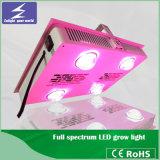 Heißes volles Spektrum der Verkaufs-Leistungs-600W LED wachsen Licht