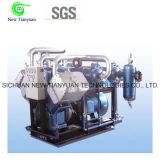 Compressore tipo pistone del migliore di prezzi gas della trimetilammina