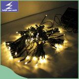 휴일 정원 나무 당을%s 태양 LED 크리스마스 결혼식 커튼 끈 빛