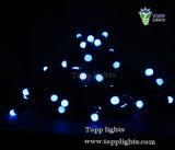 220V/110V LED Blasen-Zeichenkette-Licht