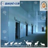 Проекты комнаты холодильных установок Xinyue большие