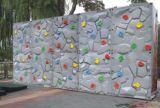 子供のための新しいデザイン人工的なプラスチック上昇の壁