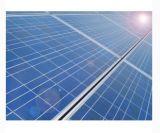 Comitato solare dell'alto di Quanlity silicone policristallino di alta efficienza poli