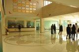 人工的な石造りの建築材料のNano結晶させたガラス床タイル