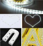 La tira Bendable de DC12V S LED para la iluminación pone letras a insignias